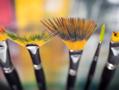Waterbrush-&-Brushes