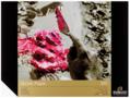 Rembrandt-Acrylpapier