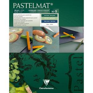 Pastelmat No 5 Pastel Papier verlijmd Groen Blauw  Wit kleuren fijne structuur 12 vellen van Clairefontaine 360 grams 24 x 30 cm