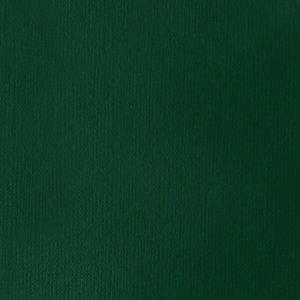 Viridian Hue Perm Soft Body Liquitex Professional 59 ml Kleur 398