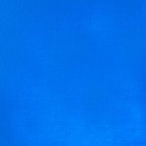 Fluorescent Blue Soft Body Liquitex Professional 59 ml Kleur 984