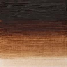 Burnt Umber Artists Oil Colour Winsor & Newton 200 ML Kleur 076