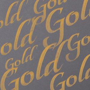 Gold Calligraphy Ink van Winsor & Newton 30 ML Kleur 283