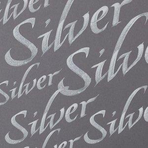 Silver Calligraphy Ink van Winsor & Newton 30 ML Kleur 617