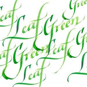 Leaf Green Calligraphy Ink van Winsor & Newton 30 ML Kleur 341