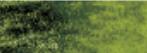 Graphitint Meadow wateroplosbare kleur- & grafietpotlood Derwent Kleur 10