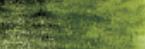 Graphitint Ivy wateroplosbare kleur- & grafietpotlood Derwent Kleur 11
