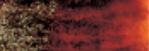 Graphitint Chestnut wateroplosbare kleur- & grafietpotlood Derwent Kleur 13
