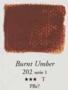 Egg Tempera Omber Gebrand Sennelier 21 ML Serie 1 Kleur 202