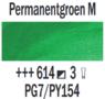 Permanentgroen middel  Rembrandt Olieverf Royal Talens 40 ML (Serie 3) Kleur 614