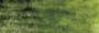 Graphitint Ivy wateroplosbare kleur- & grafietpotlood Derwent Kleur 11_5